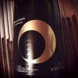 Bertin-Delatte Vin de France Pét-Nat' Pop Sec 2015