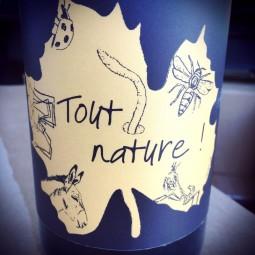 Domaine Ledogar Vin de France Tout Nature 2014