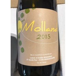 Domaine Bonnardot Vin de France Molland 2015