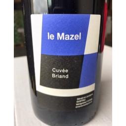 Domaine du Mazel Vin de France Briand 2015
