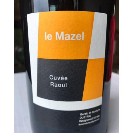 Domaine du Mazel Vin de France Raoul 2015