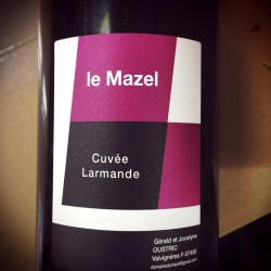 Domaine du Mazel Vin de France Larmande 2013 - M