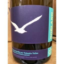 Valentin Vallés Vin de France blanc Goéland 2018