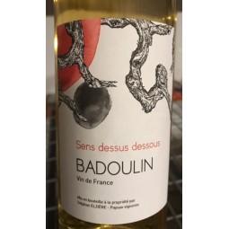 Stéphan Elzière Vin de France Badoulin Chardonnay Sens Dessus Dessous 2012