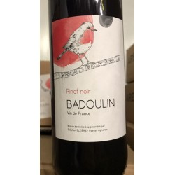 Stéphan Elzière IGP Puy de Dôme Badoulin Pinot Noir 2015