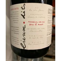 Selosse Champagne Brut Blanc de Noirs Sous le Mont (dégorgement 2016)