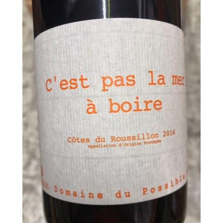 Domaine du Possible Cotes du Roussillon C'est pas la Mer à Boire 2011 Magnum
