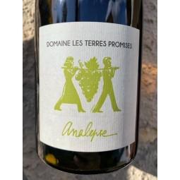 Domaine Les Terres Promises Vin de France blanc Analepse non-filtré 2018