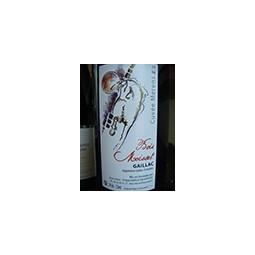 Domaine Bois-Moisset Vin de France rouge Mérens 2016