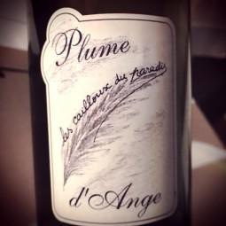 Les Cailloux du Paradis Vin de France blanc Plume d'Ange 2016