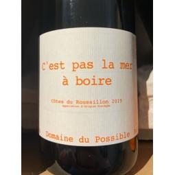 Domaine du Possible Côtes du Roussillon C'est pas la Mer à Boire 2019