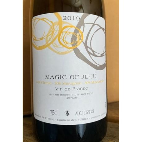 Domaine Mosse Vin de France blanc Magic of Ju-Ju 2015