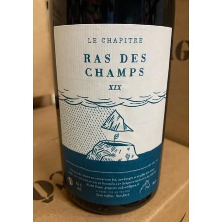 Domaine Le Chapître Vin de France rouge Ras des Champs 2019